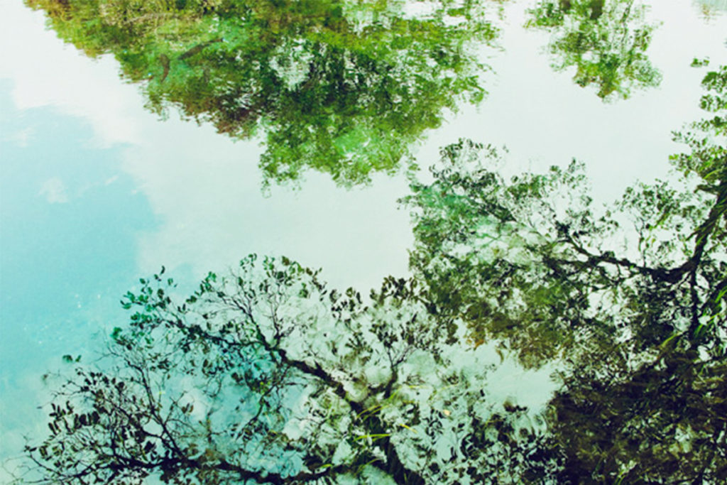 KURO Landscapes20
